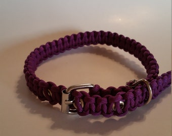Vibrant purple paracord dog collar with eyelets and buckle