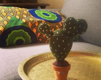Mini Cactus in Joseph crochet