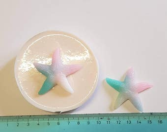 Flexible silicone mold starfish!