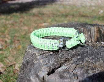 Glow in the Dark Paracord Martingale Dog Collar