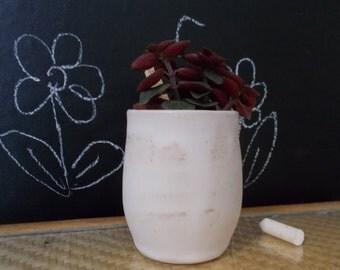 Pot for succulent soft colors