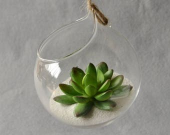 Hanging Glass Vase Hanging Terrarium Glass Vase Hydroponic Flower Indoor Office Home Decor Ornament