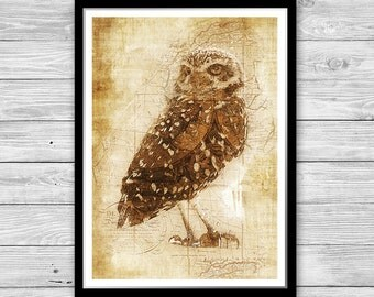 Owl print,Bird of prey poster, Archival art print with style of old geographic maps, Woodland Decor, Owl Art print, Animal wall art