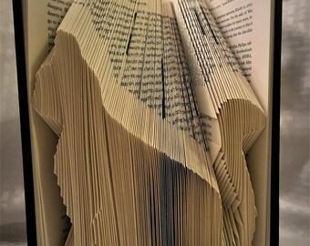 Cat Book Folding
