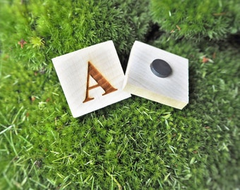 Alphabet Magnets Fridge Magnets Letter Magnets Learning ABC Educational Toy Preschool Learning Wood Letters Kids Gift Educational Game