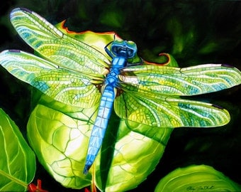 "Dragonfly print, 11x14 inch matted print from original oil painting ""Dragonfly"" by Sheryl Sawchuk"