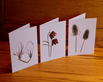 Nature Cards - set of six different cards