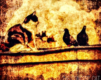 Cat art, birds of Paris, art print, fine art
