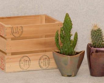 Set 2 Mettalic Mini Planters, Ceramic planter, Ceramic for cactus, Mini pot,Small ceramic planter,Glazed Pottery Planter,Small Stoneware Pot