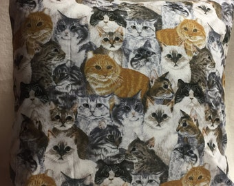 Cats!! Pillow 14 x 14 (#006)