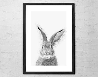Rabbit Print - Woodlands Nursery - Rabbit Wall Art Decor - Black and White Animal Print - Black and White Nursery - Woodlands Bunny