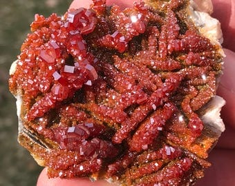 Vanadinite / WOW Crystals / Morocco, 169g, with Barite, Rocks and Minerals