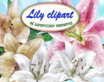 Lilies watercolor clipart 300 dpi, Lily flowers, Digital scrapbooking, Pictures for postcards. For paper crafts