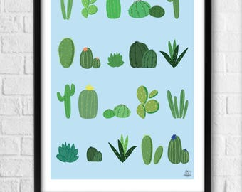 Poster Decoration Interior Illustration Cactus A4 (21 x 29, 7cm) or A3 (29.7 x 42cm) frame - the Cactus