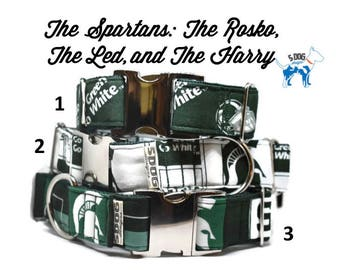 Green and White University Dog Collar, Martingale collar, Martingale Buckle, Metal Buckle Dog Collar, The Spartans Custom Dog Collar