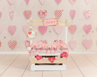 Newborn Photography Valentines Day Booth Digital Backdrop Prop