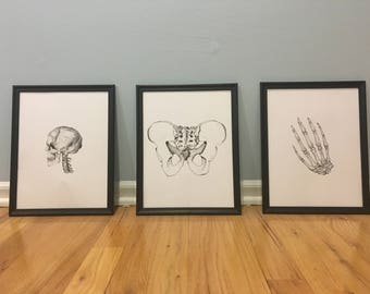 Bones Collection 3/3 Print Set