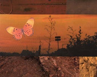 butterfly print #5: instant download