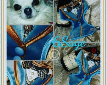Suit style dog harness, hand made in blue velvet. Chihuahua,  puppy, pomeranian couture one off item