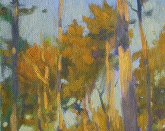 6x8 Brilliant Sunset on Trees winter Landscape Painting Long Shadows Golden Light Landscape Painting Colorist Impressionist Forest Painting