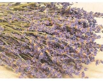 Dried English Lavender | Lavender Bouquet | Lavender Bunches | 50 Stems Lavender | Wedding Lavender