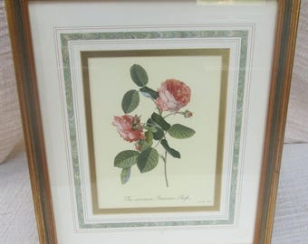 Botanical flower prints Victoria and Albert musium signed limited editon.
