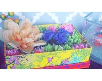 SugaInaBox Gift Box