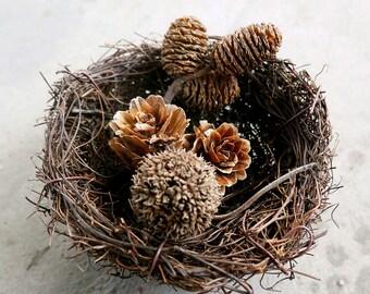 Rustic bird nest Natural Wedding Alternative Engagement Ring Box Ring Holder