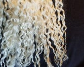 CRAZY Teeswater long wool locks 12+ inches tail spin doll hair dreadlocks embellishments #105