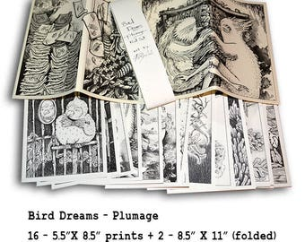 Bird Dreams ~Plumage~ Art Zine Prints by Poxodd.   Feather themed illustrations. Set with 18 different prints!