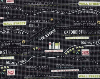 Road 15 by Sweetwater Map Black Half Yard