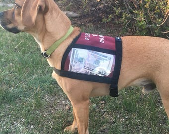 FUNDRAISING VEST with clear pockets for donations, size SMALL, money vest for small dog, adoption, fundraising, animal rescue