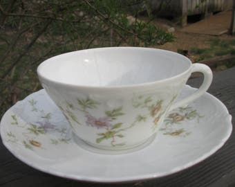 Vintage Austrian Porcelain - Habsburg Teacup and Saucer - 1920s Habsburg China
