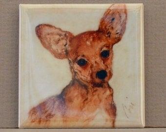 Chihuahua Art Square Magnet By Cori Solomon