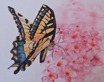 Art, Fine Art Print of Watercolor Painting of a Butterfly on a Pink Phlox