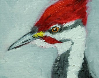 Bird painting 262 6x6 inch portrait original woodpecker oil painting by Roz