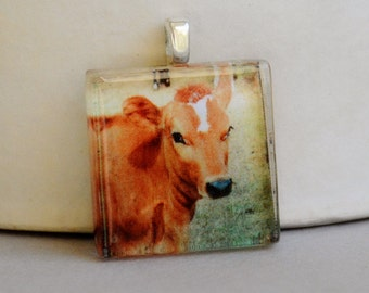 Miss Eleanor Fine Art Photo Glass Tile Pendant - Cow Photography -  Nature Photography