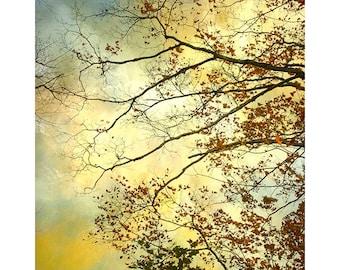 Nature Photography, Stormy Sky Print, Rustic Decor,  Gold Wall Decor, Abstract Art,  Fine Art Print