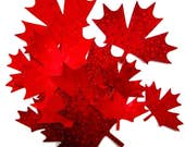 Diecut MAPLE LEAVES, DIY, Quilts of Valour Maple Leaf Appliques, cotton, assorted, Temporary Iron on, then sew!