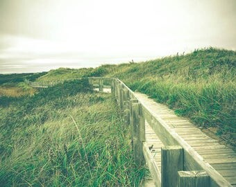 Minimalist Decor - Beach Photograph - Beach Dunes Art Print - Cape Breton - Nova Scotia - Beach Decor - Nature Photography - Green - Rustic