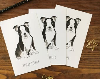 Boston Terrier Postcards Bulldog lover Boston Terrier Card Dog illustration Puppy card Dog postcard Dog lover Thank you card Just Because