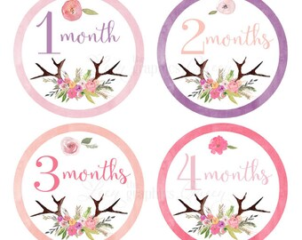 Baby Month Stickers Baby Girl Growth Decals Monthly Baby Stickers Baby Shirt Stickers Baby Shower Gift Flower Antler Girl Month Stickers USA