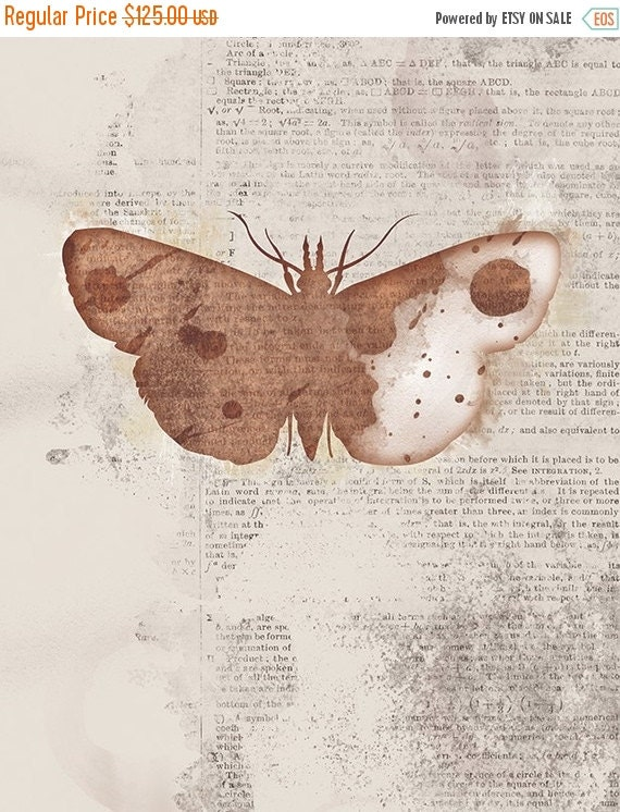 50% Off - Black Friday Moth Art - 24x36 Print Large - Leopold - Butterflies and Moths Series - Brown Collage Art