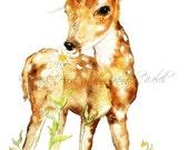 Deer Art,  Art Print, Wildlife Art, Fawn, Watercolor Print, Watercolor Painting, Deer Painting, Home Decor, Animal Art, Majik Horse