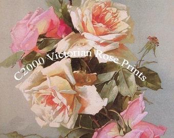 Catherine Klein Roses, Art Print, Half Yard Long, No 1