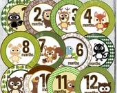 MONTHLY IRON ONS Decals or Monthly Stickers- 12 Monthly iron on heat transfers - for Baby - Forest Animals(Style#C15)