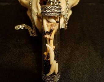 Animal teeth and bone reliquary pendant