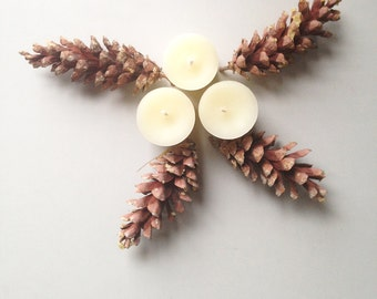 Beeswax Candles. Beeswax Votive Candles. Small Candles Beeswax. Holiday Candles. Tabletop Decorations. Little Luxuries. Gifts Under 15.