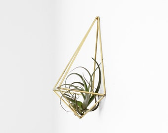 UMBRAE - Modern Geometric Wall Prism - Himmeli - Air Plant Holder