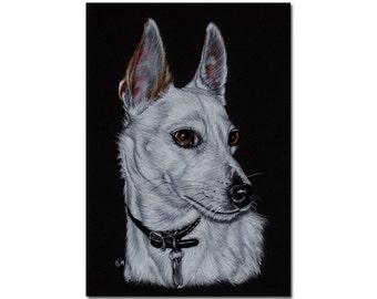 "4""x6"" COMMISSION PET Custom animal PORTRAIT Sandrine Curtiss Original Art animal colored pencil painting Gift dog cat wildlife"